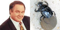 Rush Limbaugh, Dung Beetle (left, right)